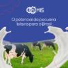 O potencial da pecuária leiteira para o Brasil