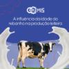 A influência da idade do rebanho na produção de leite